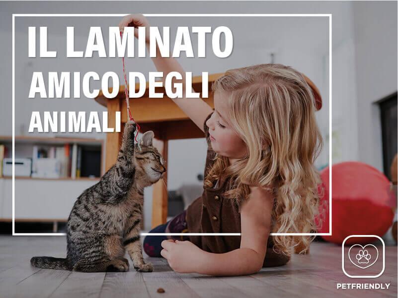 Parquet Laminato Casa con animali